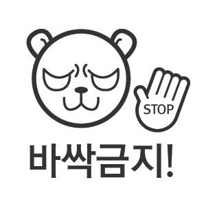 무쉬 Michin 곰,토끼 초보운전(8종선택)