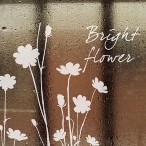 빛나는 꽃