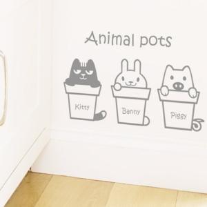고양이화분