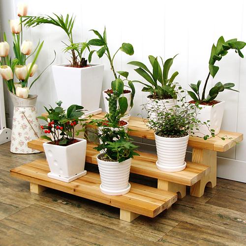 [동화속나무]원목화분받침대 화분정리대 다육이선반 시리즈