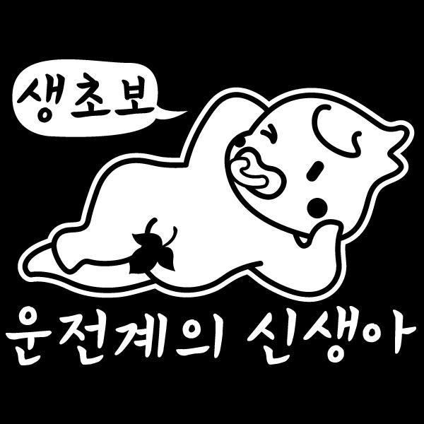 자동차스티커_운전계의 신생아