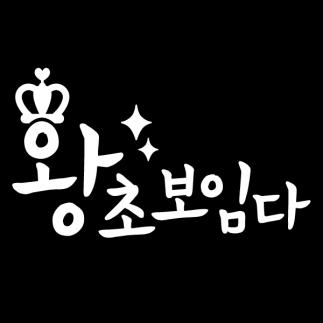 자동차스티커_왕초보임다