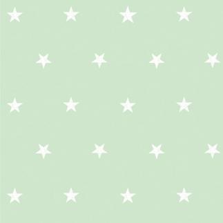 별사탕민트(HWP-21617)