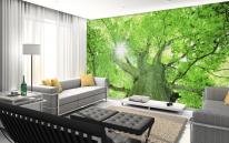 나무숲(gmg-005)