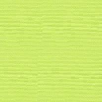 코스모스 앨리스 4434-2 비비드 그린