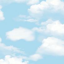코스모스 앨리스 4287-1 뭉게구름