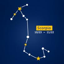 (LU-S95) 별자리스티커-전갈자리
