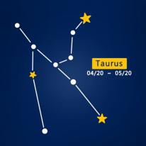 (LU-S89) 별자리스티커-황소자리