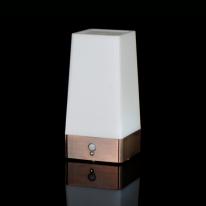 Romeo 센서라이트 LED 건전지 센서등 (FSL150)