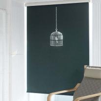 은은한 채광이 돋보이는 레이저 블라인드 새장