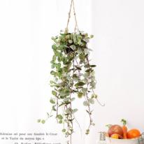 [2HOT] 미니 제나륨분 헹잉 바구니 조화 1P