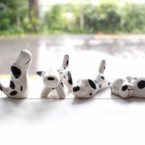 [2HOT] 꼬꼬마 강아지 4P