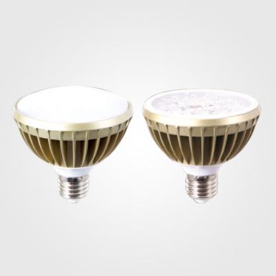 [씨티]LED PAR30램프 15W(집중형,확산형)