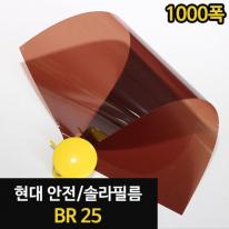 솔라 필름 - BR_25/WES00064[1M]