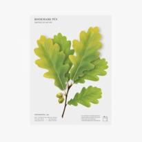 [APPREE] 북마크펜 도토리잎 2P