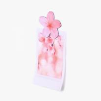 [APPREE] 리프 마그넷 벚꽃 4P