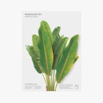 [APPREE] 북마크펜 바나나잎 2P