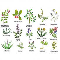 3D전사지]Plant Book-2(98038)