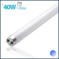 컬러형광램프40W(BLUE)1box