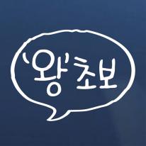 손글씨 초보운전 스티커 2종