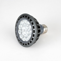 LED PAR 30 집중형 / 확산형 컨버터 내장형 램프 (15W)