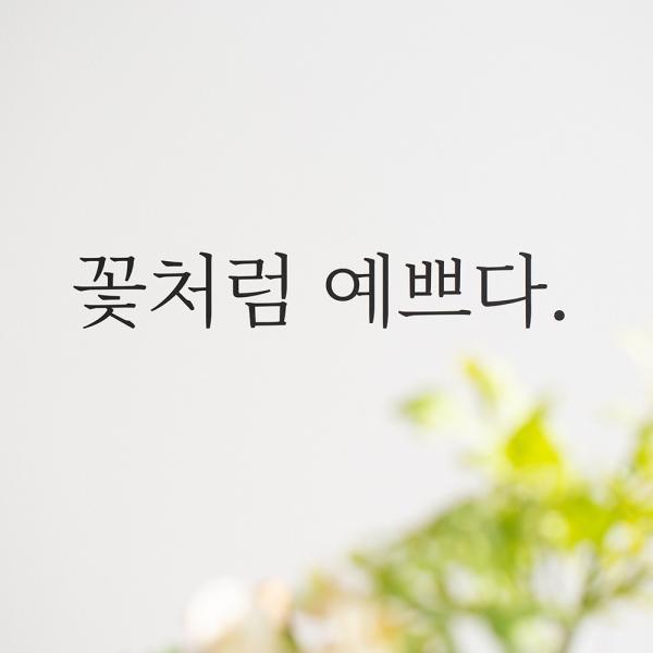 무쉬 감성 레터링 스티커