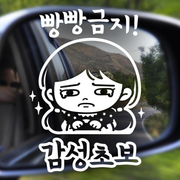 자동차스티커 초보운전스티커 반사 099
