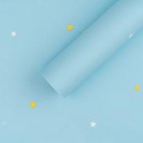 만능 풀바른벽지 합지 C45076-2 블루별