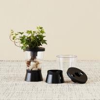 에코리움 수경재배 수경식물 구피어항