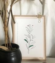 아이오펄아모르) 성경말씀포스터 - 드로잉 식물 일러스트 포스터