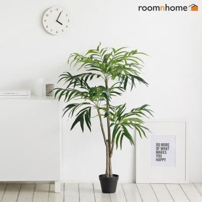 [룸앤홈] 자바조화나무