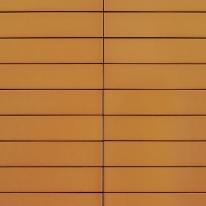 카멜 비비드타일 50x250 (REV-08) 1BOX 76장