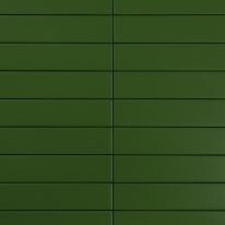 다크 포레스트 비비드타일 50x250 (REV-10) 1BOX 76장