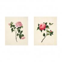 인테리어 월아트 익시 - Two Flowers