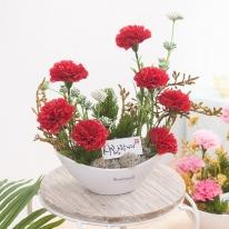 라인비누카네이션화분_P 정3호 (2색상) 비누꽃