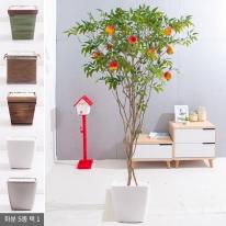 라인-석류나무화분set 210cm (조화) FREOFT