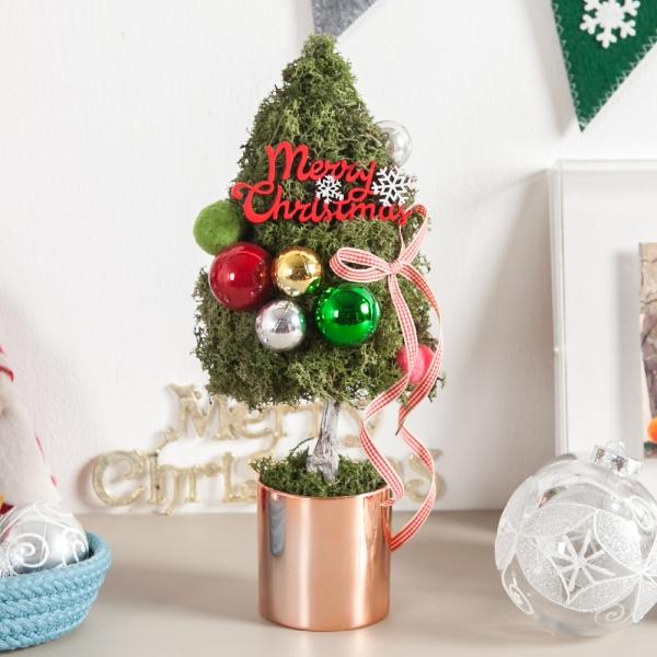 스칸디아볼트리화분 34cmP 크리스마스 트리 TRHMES