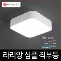 라리앙 심플 LED 18W 직부등 주광색 주백색 조명