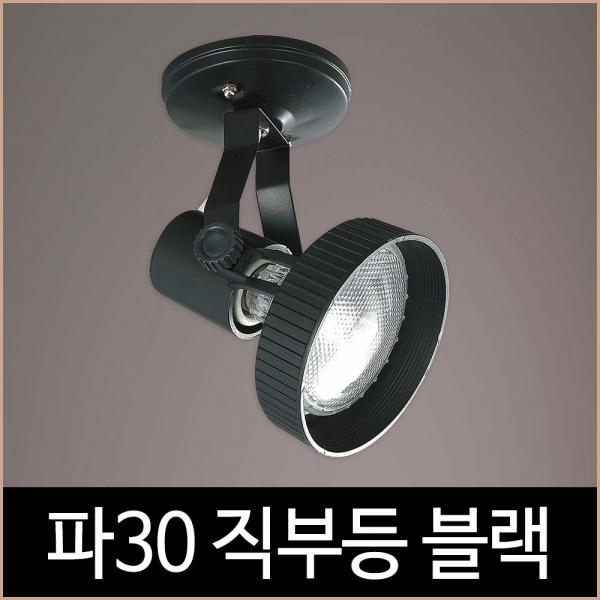 파30 직부 블랙 흑색 파삼공 PAR30 직부등 기구 LED
