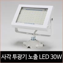 에스에스라이트 사각투광기 노출 주광색 LED 30w