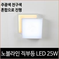 노블라인 LED 25w 직부등 주광색 전구색 현관등