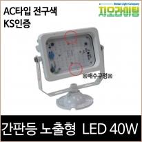 지오라이팅 간판 투광기 노출 화이트 LED 40W 전구색