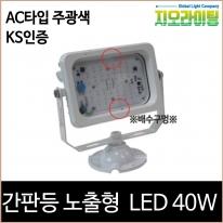 지오라이팅 간판 투광기 노출 화이트 LED 40W 주광색