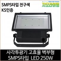 지오라이팅 사각투광기 벽부형 SMPS LED 250W 전구색