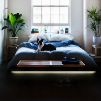 [포라이트] LED T5 간접등 전구색/주광색 인테리어 조명 아트월 침대 안정기 내장형 KS인증
