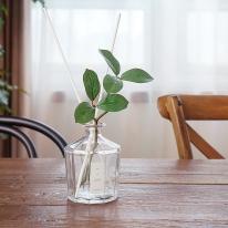 인테리어감성 식물 실내디퓨저