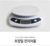 [레지나샵] 초정밀저울/전자저울[0.1~1 kg]