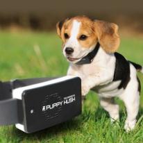 퍼피허쉬 진동형 강아지 개 짖음방지기 애견훈련용품