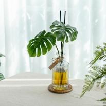 플랜테리어 디퓨저 몬스테라 그리너리 방향제 식물성 발효주정 150ml