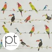 PT Toucan Talk Tropical 8634/522 영국 수입원단
